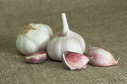 Scientists: Men should eat garlic before a date