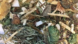 A woman died after drinking a poisonous herbal tea