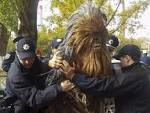 Video of detention Odessa Chewbacca appeared on the Internet