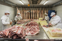 New meat-packing plant under the Vladikavkaz has released the first batch of products