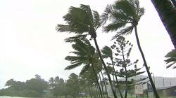 "Storm ""Debby"" hit the coast of North-Eastern Australia"
