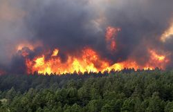 The huge territory of the Siberian forest and taiga still on fire