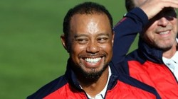 Tiger woods was arrested for drunk driving