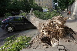 In Moscow the death toll from the hurricane has risen to 16 people