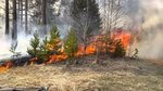 During the day, in the far East fires have destroyed another 17.5 thousand hectares of a taiga
